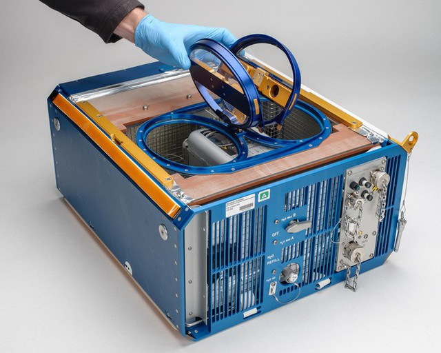 NASA mang chuột lên ISS, và chúng biến thành những con chuột bay đáng sợ thế này đây - Ảnh 2.