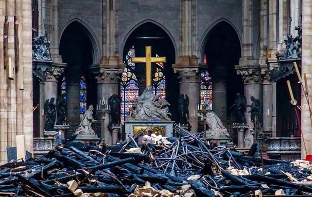 Nước Pháp không còn cây gỗ đủ cao để phục chế mái nhà thờ Đức Bà - Ảnh 2.