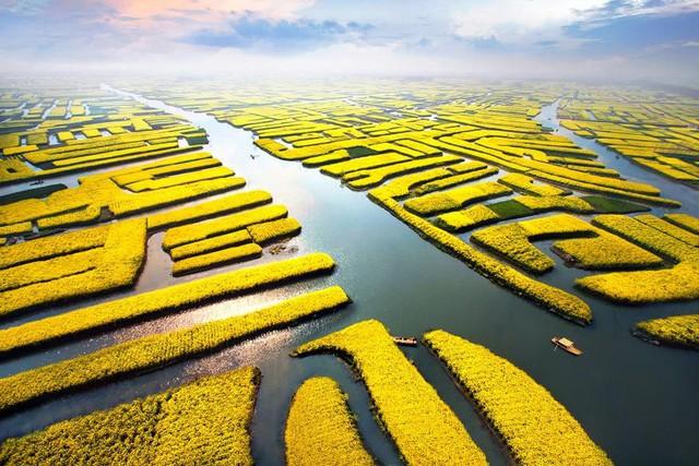 Trung Quốc đang nuôi hơn 1,4 tỷ dân của mình như thế nào? (Phần 1) - Ảnh 17.
