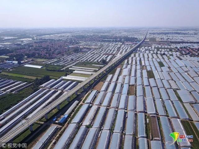Trung Quốc đang nuôi hơn 1,4 tỷ dân của mình như thế nào? (Phần 1) - Ảnh 24.