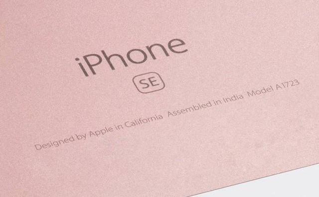 Con cá mập Apple đã bắt đầu lân la vào bể máu của Samsung và Xiaomi - Ảnh 3.