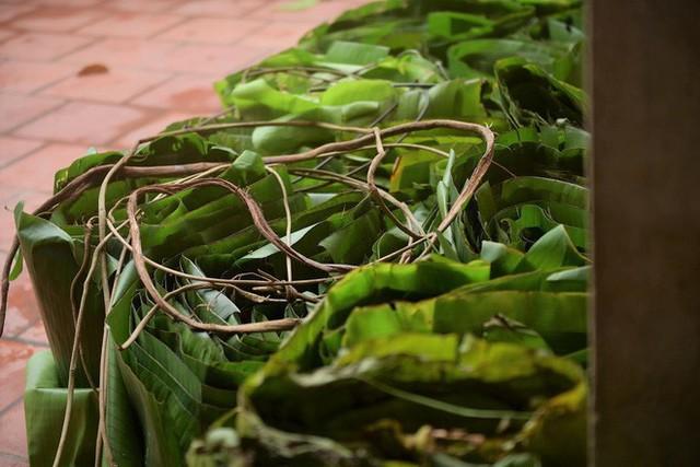 Nghề độc ở Hà Nội: Bán lá chuối rừng, kiếm hàng chục triệu đồng mỗi tháng - Ảnh 9.