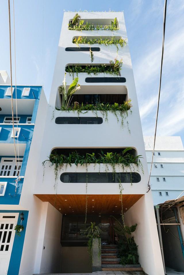 Ngôi nhà 7 tầng vừa ở vừa cho thuê với những khu vườn treo rất nên thơ ở Vũng Tàu - Ảnh 1.