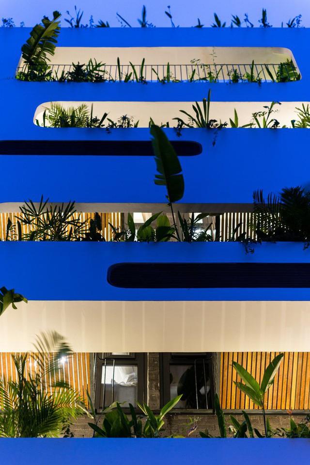 Ngôi nhà 7 tầng vừa ở vừa cho thuê với những khu vườn treo rất nên thơ ở Vũng Tàu - Ảnh 2.