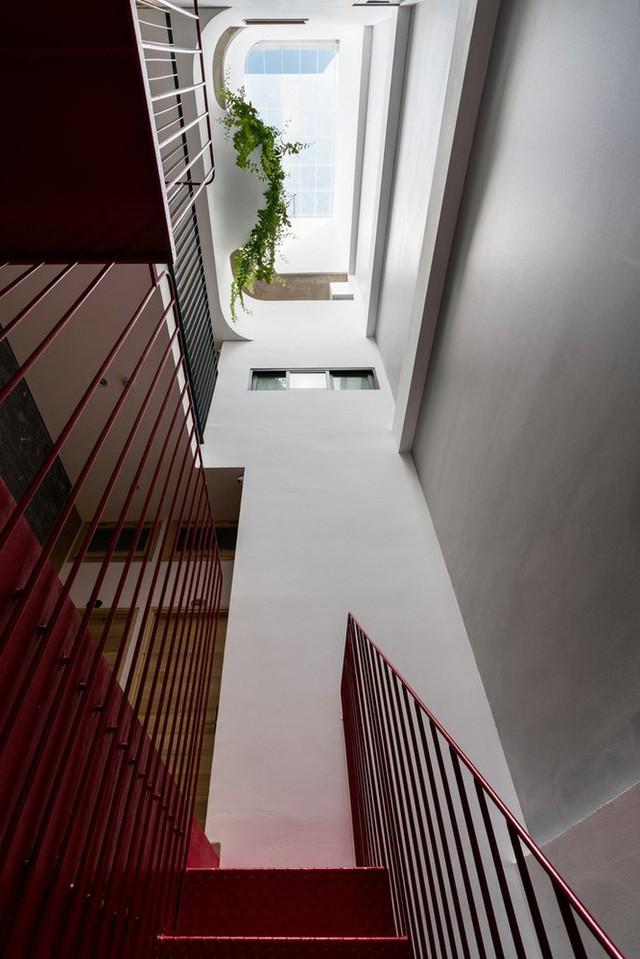 Ngôi nhà 7 tầng vừa ở vừa cho thuê với những khu vườn treo rất nên thơ ở Vũng Tàu - Ảnh 3.