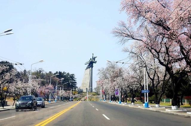 Vẻ đẹp Triều Tiên qua ống kính của phóng viên TTXVN - Ảnh 20.