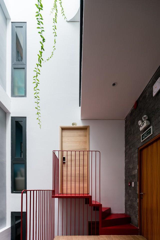 Ngôi nhà 7 tầng vừa ở vừa cho thuê với những khu vườn treo rất nên thơ ở Vũng Tàu - Ảnh 4.