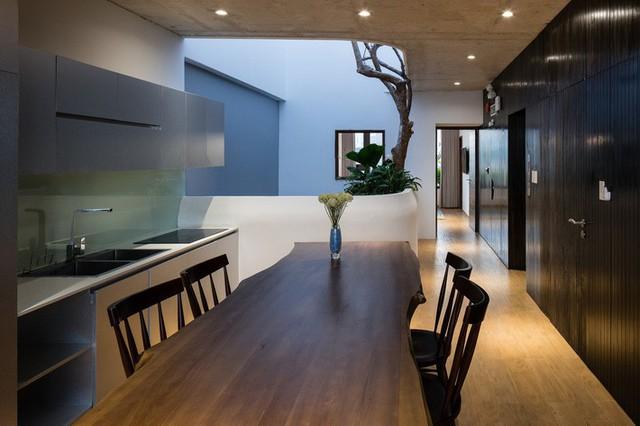 Ngôi nhà 7 tầng vừa ở vừa cho thuê với những khu vườn treo rất nên thơ ở Vũng Tàu - Ảnh 7.