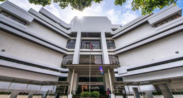 Lưu trú quá hạn ở Singapore, một du học sinh Việt Nam bị phạt tù và đánh 4 roi - Ảnh 1.