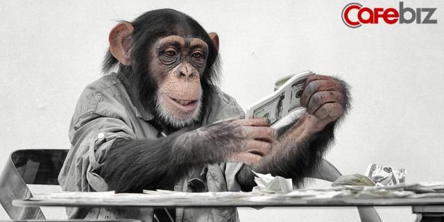 Nghiên cứu của ĐH Yale: Tạo ra tiền tệ riêng dành cho khỉ, kết quả là chúng hành động không khác gì dân đầu tư chứng khoán thứ thiệt - Ảnh 1.