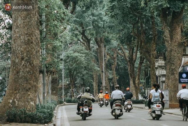 Chiều chiều đảo vài vòng giữa phố xá Hà Nội mà ngỡ như cuối Đông - Tết sắp về - Ảnh 1.