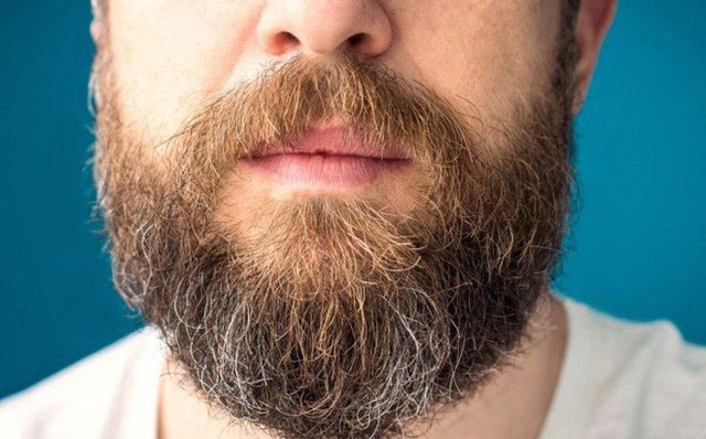 Nghiên cứu mới gây sốc: Râu đàn ông chứa nhiều vi khuẩn hơn lông chó - Ảnh 1.
