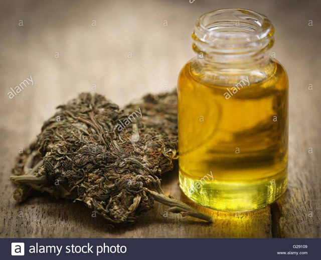 Nhận biết các loại ma túy và tác hại của chúng - Ảnh 4.