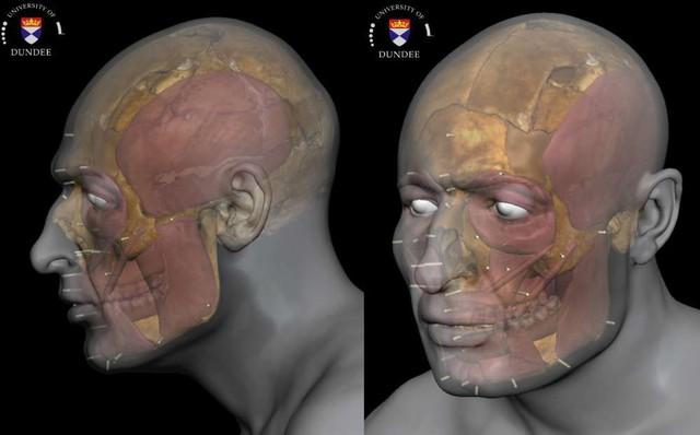 Tái tạo thành công gương mặt nạn nhân của một vụ giết người man rợ từ bộ xương 1400 năm tuổi - Ảnh 1.