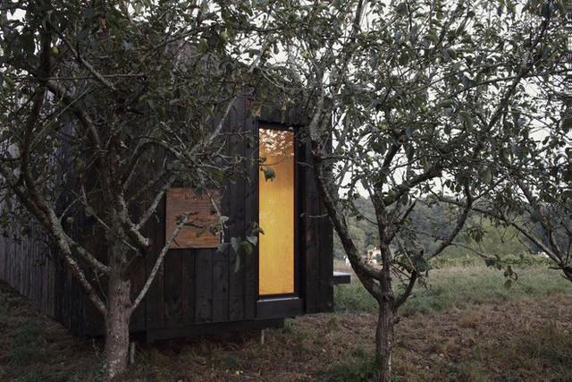 Độc đáo với cabin 22m2 có 2 phòng ngủ riêng biệt - Ảnh 8.