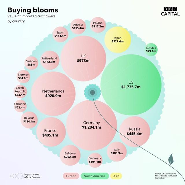 Thị trường hoa: Tại sao một sản phẩm bạn có thể nhổ ra khỏi mặt đất lại có giá cao đến như vậy? - Ảnh 2.