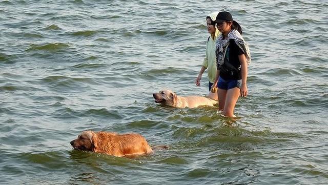 Người dân Hà Nội rủ nhau ra Hồ Tây tắm hạ nhiệt ngày cuối tuần nắng như nung - Ảnh 4.