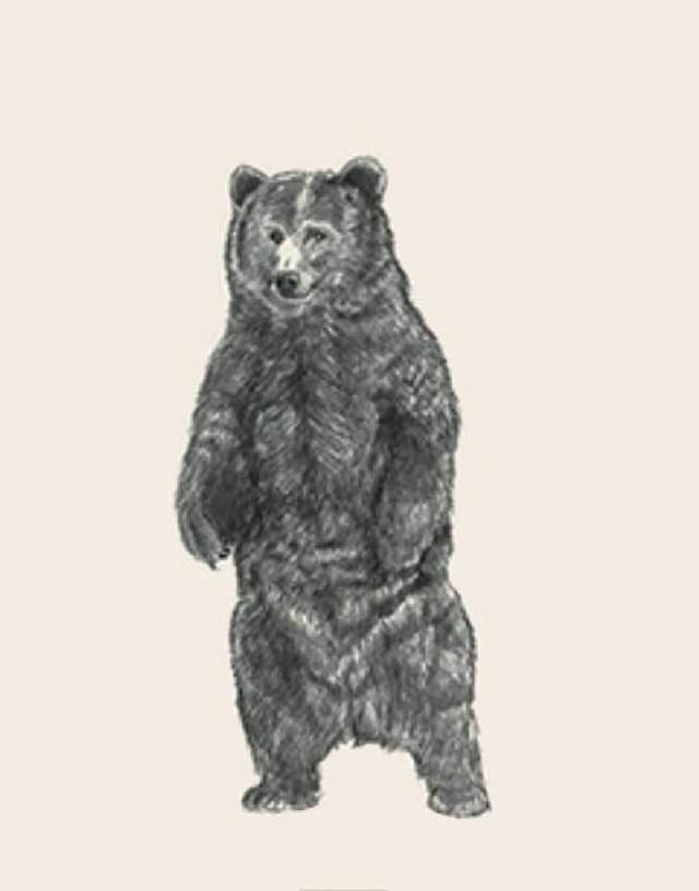 Hướng dẫn tạo hình chiếu động vật 4D đang được cư dân mạng thi nhau làm - Ảnh 5.