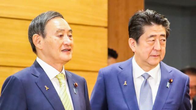 Yoshihide Suga: Từ con của người trồng dâu tây đến người có tầm ảnh hưởng tại chính trường Nhật Bản, ứng viên kế nhiệm thủ tướng Abe - Ảnh 2.