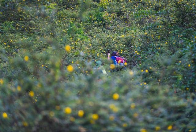 Bộ ảnh ghi trọn cảnh thần tiên đẹp đến nao lòng trên đỉnh Ky Quan San: Thu vào tầm mắt muôn trùng nước non chính là đây! - Ảnh 6.