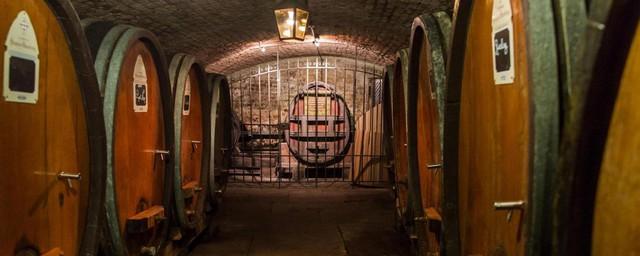 Phương pháp trị bệnh thú vị bằng rượu vang ở Pháp - Ảnh 2.