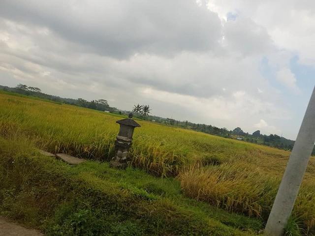 """Review sốc: Cư dân mạng tranh cãi gay gắt sau khi một nữ du khách Việt đăng đàn chê Bali là """"ảo"""" và """"vô vị"""" - Ảnh 10."""