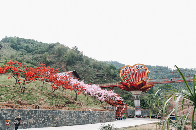 Tranh cãi xoay quanh yếu tố thẩm mỹ của cây cầu 5D đang gây sốt ở Mộc Châu: Khen đẹp thì ít nhưng chê bai sến súa, lạc lõng nhiều vô kể - Ảnh 9.