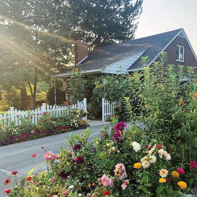 Cuộc sống vô cùng yên bình của cặp vợ chồng cùng 4 con trai bên khu vườn đầy hoa và rau - Ảnh 1.