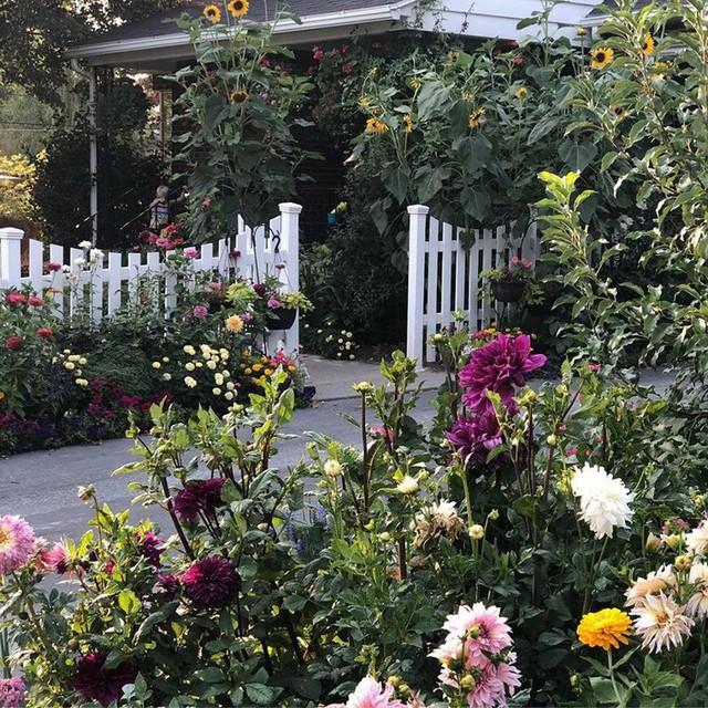 Cuộc sống vô cùng yên bình của cặp vợ chồng cùng 4 con trai bên khu vườn đầy hoa và rau - Ảnh 17.