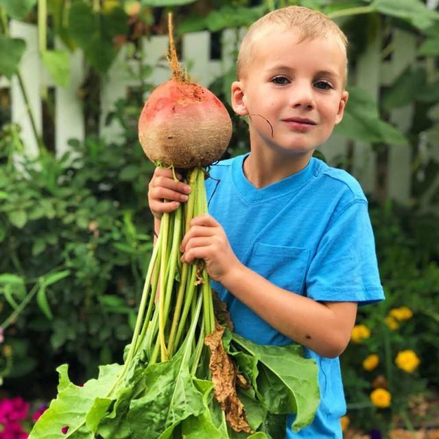 Cuộc sống vô cùng yên bình của cặp vợ chồng cùng 4 con trai bên khu vườn đầy hoa và rau - Ảnh 40.