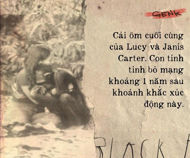 Câu chuyện đau lòng về Lucy, con tinh tinh vẫn tưởng mình là người - Ảnh 9.