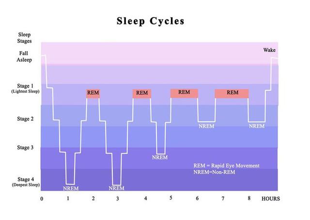 Sự thật về cái nút hoãn báo thức (Snooze) cứu vãn giấc ngủ mà nhiều người vẫn đang sử dụng - Ảnh 1.