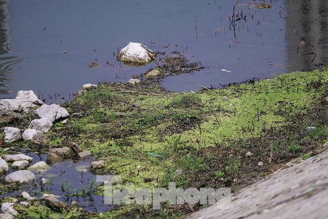 Công viên 300 tỷ cạn nước, ô nhiễm những ngày nắng gắt - Ảnh 3.