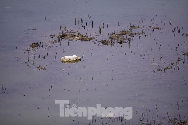 Công viên 300 tỷ cạn nước, ô nhiễm những ngày nắng gắt - Ảnh 5.