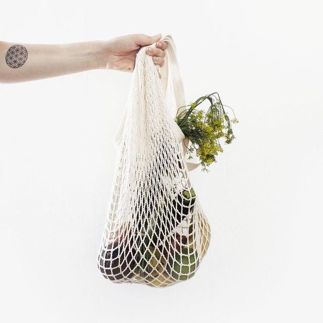 Đừng nản nếu trộm nhựa khó khăn quá, bạn có thể tham khảo các trang web truyền cảm hứng sống xanh này đây! - Ảnh 15.