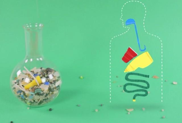 Nghiên cứu của ĐH Newcastle: Cứ 1 tuần trôi qua, mỗi người lại ăn vào lượng nhựa đủ để ép 1 chiếc thẻ ngân hàng! - Ảnh 3.