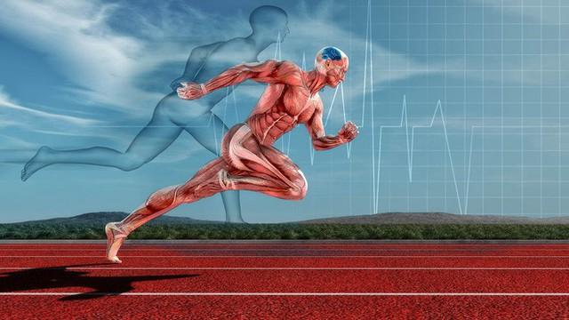 Khoa học đã tìm ra giới hạn sức chịu đựng của con người, vượt qua nó, cơ thể sẽ phải tự ăn chính mình để hoạt động - Ảnh 1.