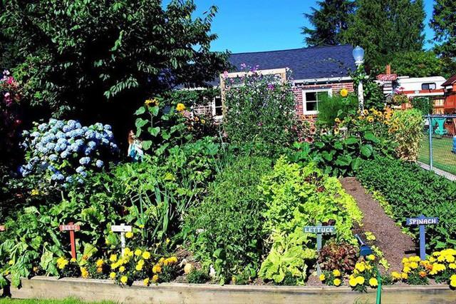 Khu vườn quá đỗi thơ mộng với hoa và rau quả của người mẹ đơn thân cùng cô con gái nhỏ xinh đẹp - Ảnh 2.