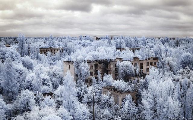 Từ vùng đất ma không ai dám bén mảng, nhà máy điện hạt nhân Chernobyl bỗng hóa xứ sở thần tiên đẹp lịm tim qua lăng kính của nhiếp ảnh gia - Ảnh 16.