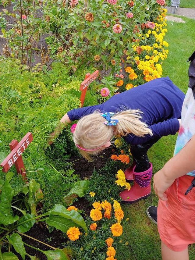 Khu vườn quá đỗi thơ mộng với hoa và rau quả của người mẹ đơn thân cùng cô con gái nhỏ xinh đẹp - Ảnh 17.