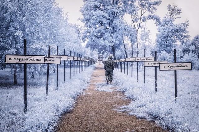 Từ vùng đất ma không ai dám bén mảng, nhà máy điện hạt nhân Chernobyl bỗng hóa xứ sở thần tiên đẹp lịm tim qua lăng kính của nhiếp ảnh gia - Ảnh 20.