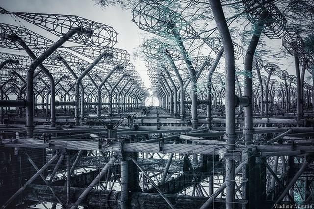 Từ vùng đất ma không ai dám bén mảng, nhà máy điện hạt nhân Chernobyl bỗng hóa xứ sở thần tiên đẹp lịm tim qua lăng kính của nhiếp ảnh gia - Ảnh 22.