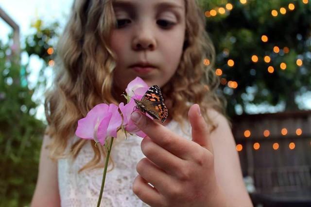 Khu vườn quá đỗi thơ mộng với hoa và rau quả của người mẹ đơn thân cùng cô con gái nhỏ xinh đẹp - Ảnh 25.