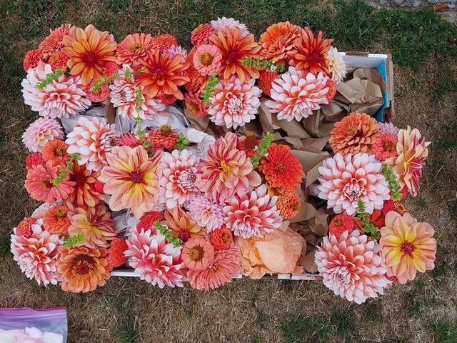 Khu vườn quá đỗi thơ mộng với hoa và rau quả của người mẹ đơn thân cùng cô con gái nhỏ xinh đẹp - Ảnh 31.