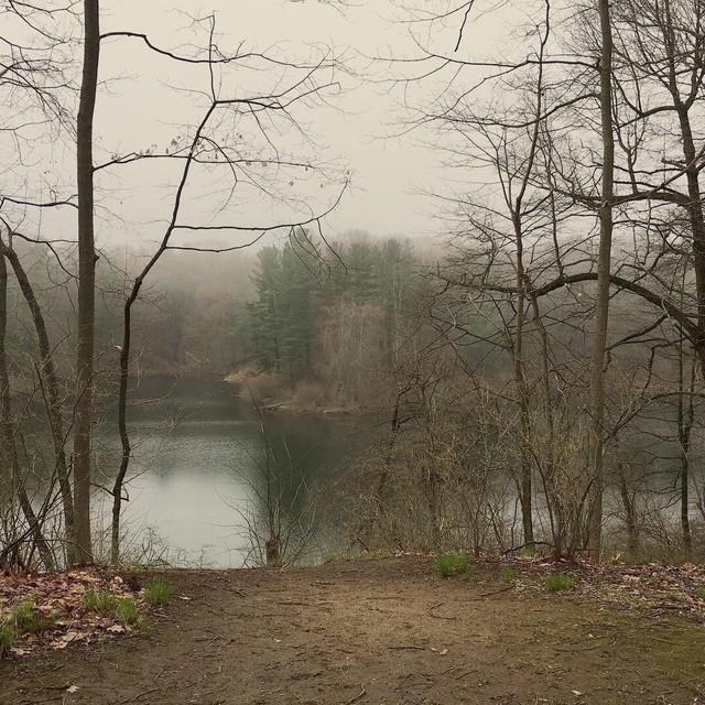 Hình dáng người phụ nữ trên thân cây và câu chuyện về người vợ bị bội phản, người mẹ dành cả đời đi tìm con gái ám ảnh công viên nước Mỹ - Ảnh 3.