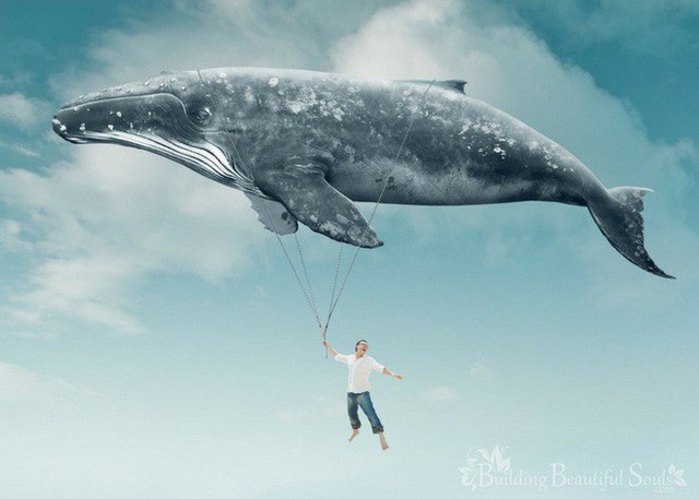 Tại sao chúng ta thích mơ thấy mình đang bay? - Ảnh 1.