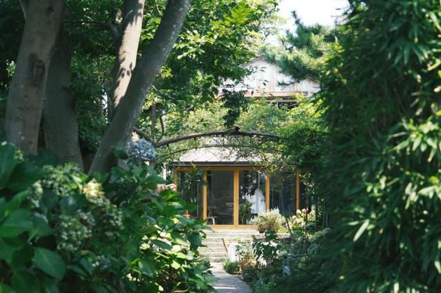 Cuộc sống hạnh phúc và bình yên của cặp vợ chồng người Nhật ở ngôi nhà nhỏ trên núi suốt 40 năm - Ảnh 9.