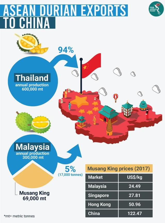 Sầu riêng: Mỏ vàng mới của Đông Nam Á - Ảnh 4.