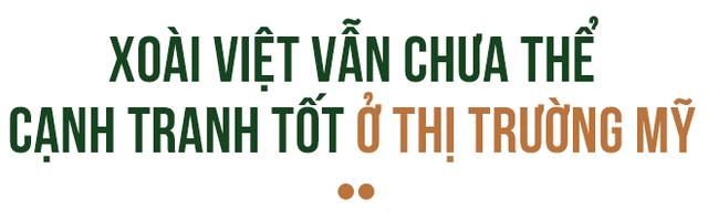 Đằng sau lô xoài Việt đầu tiên xuất khẩu sang đất Mỹ - Ảnh 4.
