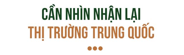 Đằng sau lô xoài Việt đầu tiên xuất khẩu sang đất Mỹ - Ảnh 6.